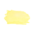 Yellow Swatch #004